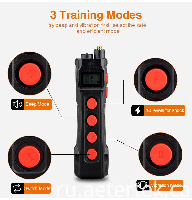 Custom Remote Training Collar